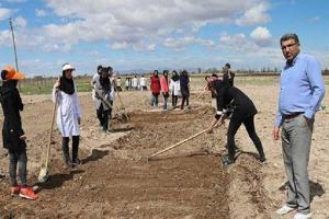 راه اندازی مزرعه آموزشی و پژوهشی گیاهان دارویی و معطر در دانشگاه شهید مدنی