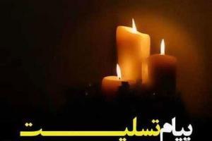 تصویر از شهادت دو شهید خراسان شمالی را در حوادث تروریستی تهران را تسلیت گفت