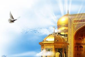 تصویر از زیارت امام رضا(ع) از زیارت امام حسین(ع) بالاتر است؟!
