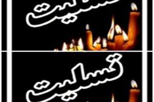 مادر شهید سید اسلام وحدانی به فرزند شهیدش پیوست