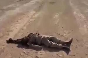 تصویر از نابودی داعشیها پس از درگیری با ارتش سوریه در قلمون + فیلم