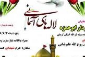 تصویر از یادواره ۱۹۳ شهید بخش ماهان کرمان