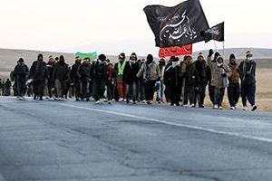 تصویر از حضور هیئت های مذهبی از فارس در حرم مطهر امام رضا (ع)