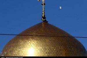 تصویر از ویژه برنامههای شهادت امام حسن عسکری(ع) در حرم مطهر رضوی برگزار میشود