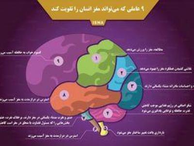 تصویر از اینفوگرافیک/ عواملی که مغز را تقویت میکند