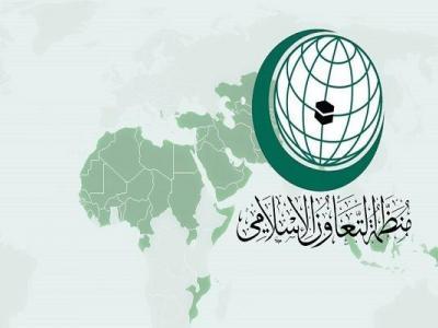 تصویر از سازمانهای بینالمللی اسلامی؛ از راهبرد تا عملکرد در جهان اسلام
