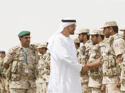 تصویر از ابراز نگرانی ترکیه از استقرار نظامیان اماراتی در جزیره سقطرا یمن