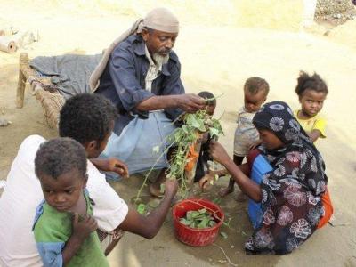 تصویر از ساکنان یمن از گرسنگی به تغذیه از برگ درختان روی آوردهاند