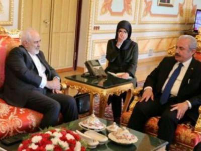 تصویر از دیدار ظریف با رئیس مجلس ملی ترکیه