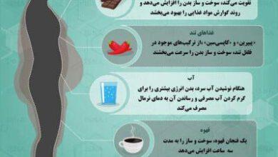 تصویر از اینفوگرافیک / خوراکیهایی که سوختوساز بدن را افزایش میدهد