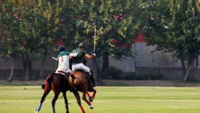تصویر از مسابقات چوگان جان وحدت در تهران برگزار میشود
